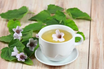 マーシュマロウ茶